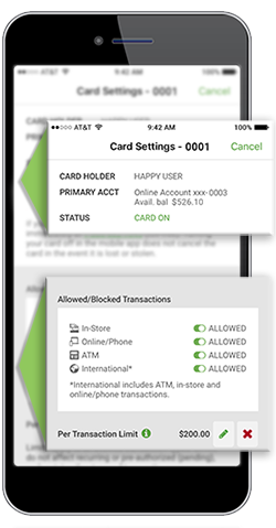 Debit Card Management sample image